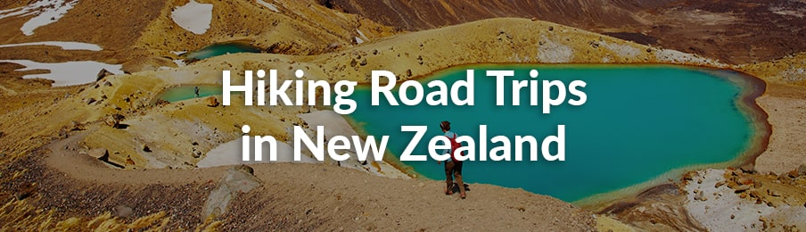 hiking road trips in new zealand