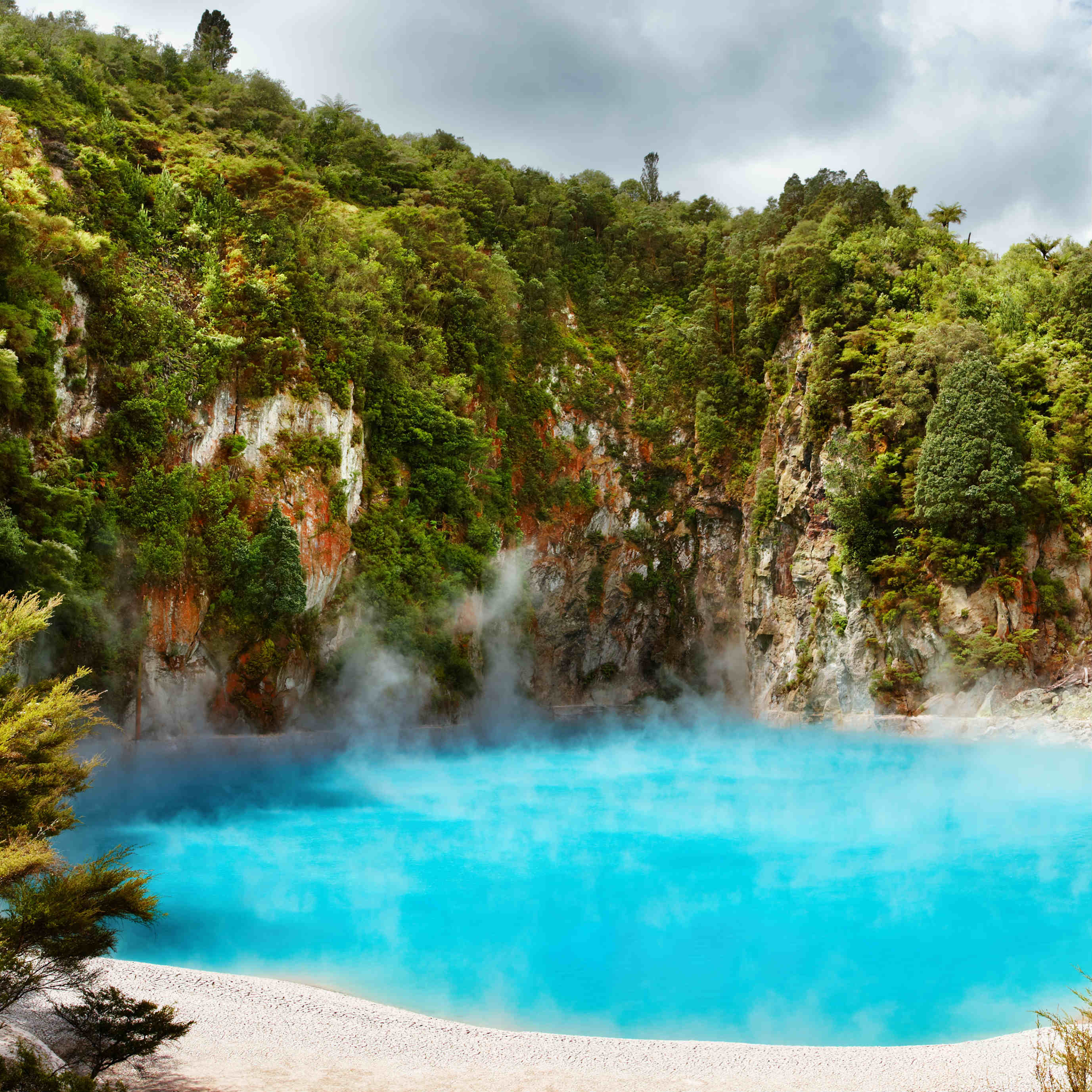 Hot thermal Spring NZ Rotorua