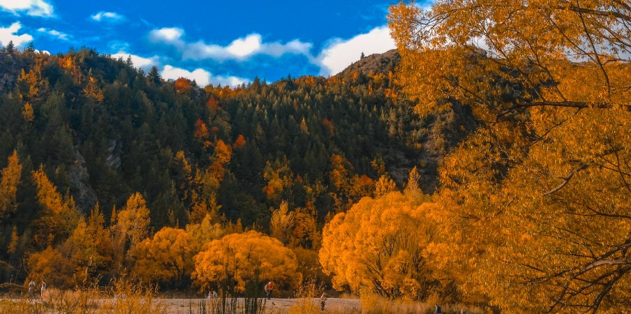 arrowtown new zealand during autumn
