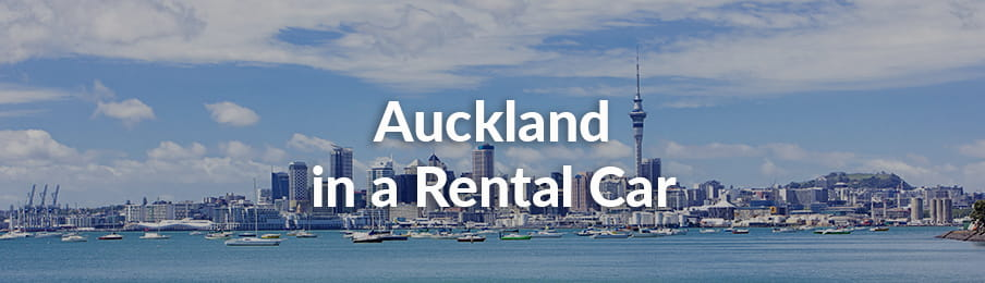 Auckland in a Rental Car Guide