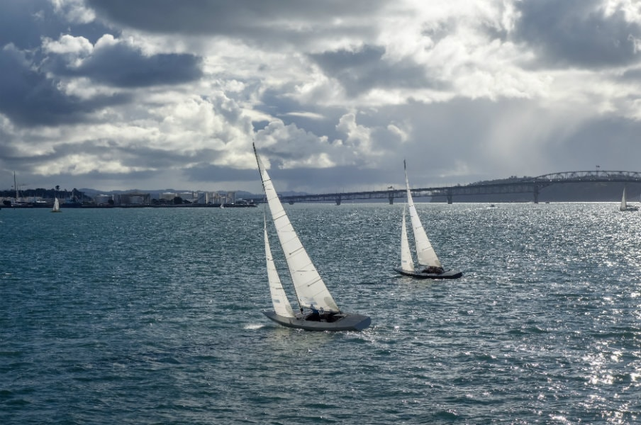 Auckland sailing regatta in summer