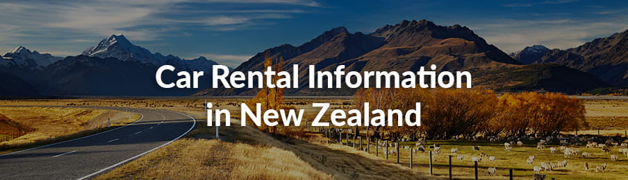 Car Rental Information in New Zealand