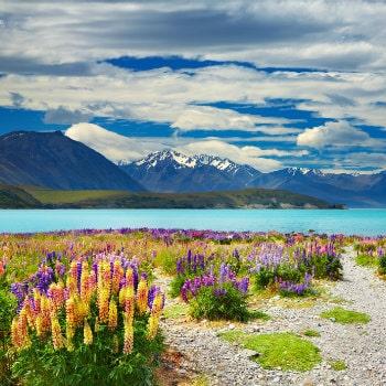 beautiful view of lake tekapo