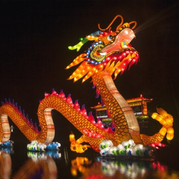 chinese new year dragon festival