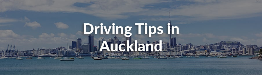 driving tips in auckland