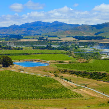 Marlborough Wine Region, South Island, NZ