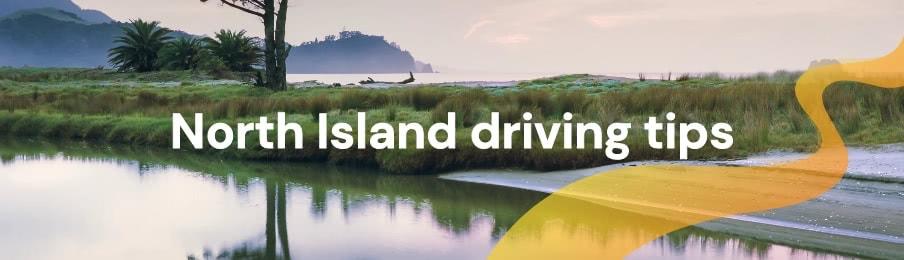 North Island driving tips
