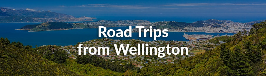 Road Trips from Wellington in New Zealand banner