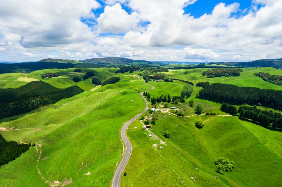 Rolling hill in Rotorua, North Island, NZ