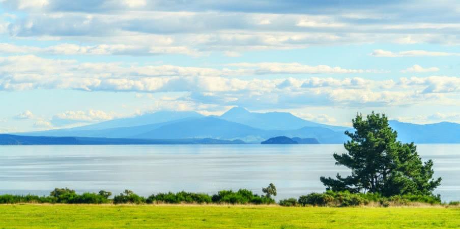 scenic shot of lake taupo, new zealand