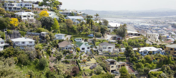 the view of napier town residential houses in new zealand