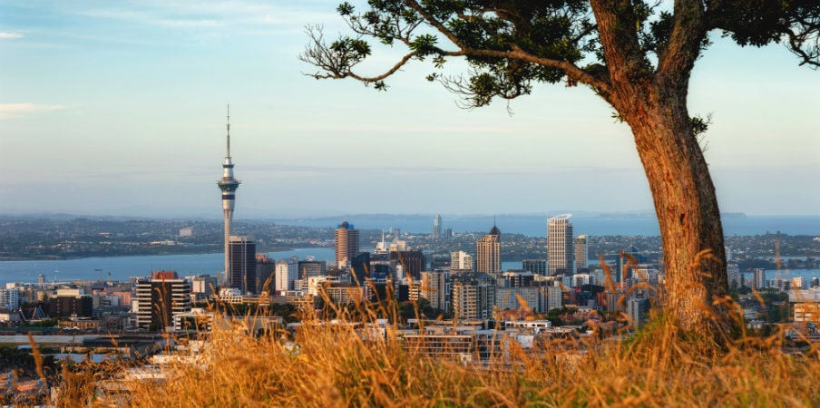 view of auckland at mount eden