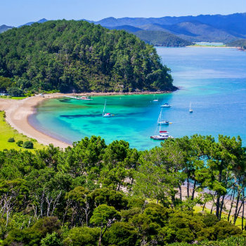 Top 10 New Year S Eve Destinations In New Zealand