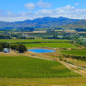 View of Marlborough wine region in South Island, NZ