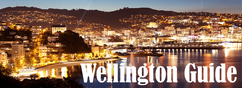 Wellington Car Hire