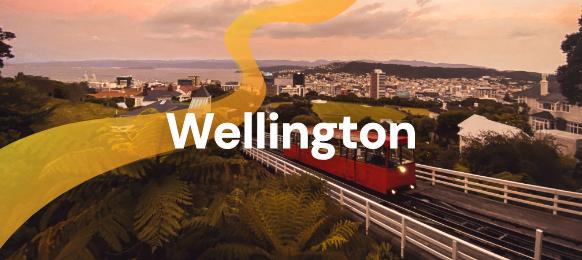 Wellington banner