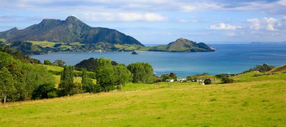beautiful landscape view in whangarei